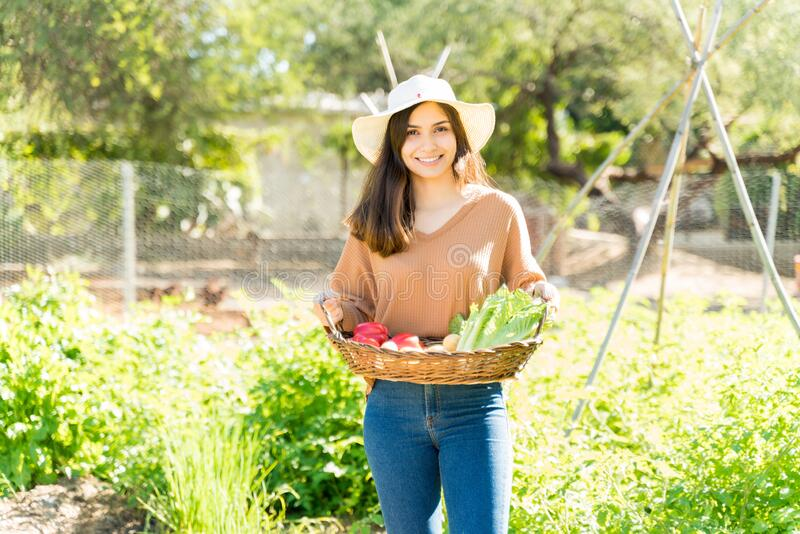 Young Farmer With Homegrown Vegetables At Garden stock photo
