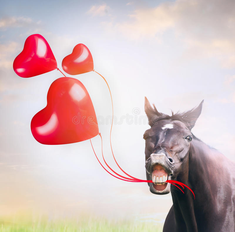 Smiling horse holding three red balloons in shape of hearts , holiday stock photo