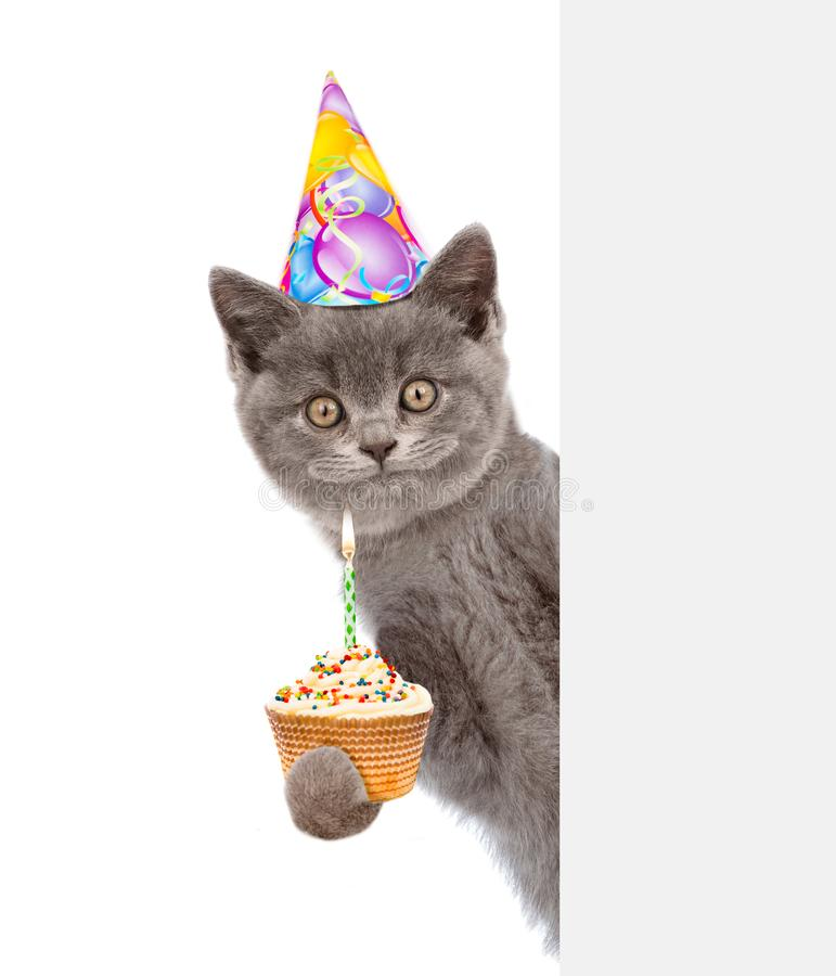 Smiling kitten with cake in birthday hat looking out because of the poster. isolated on white background.  royalty free stock photos