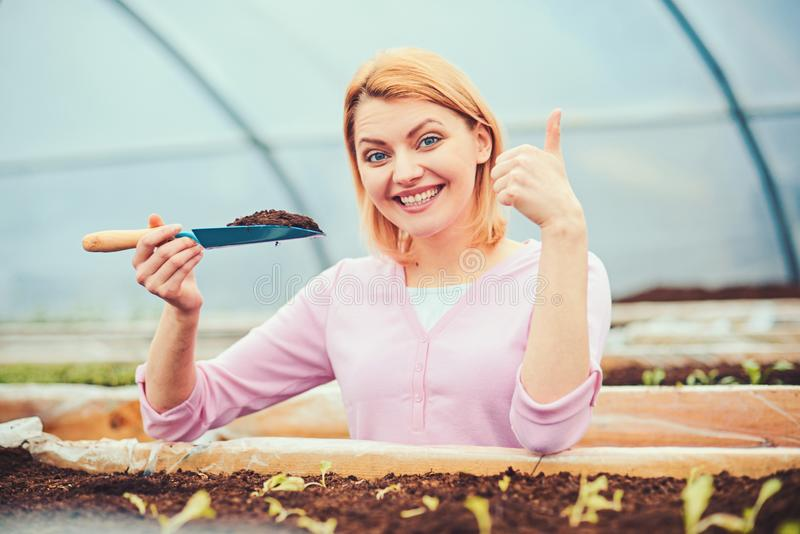 Smiling lady in pink cardigan working in greenhouse. Blond woman with short hair holding small gardening spade full of. Soil in her hand stock photo