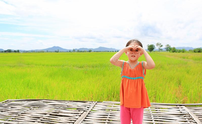 Smiling little Asian child girl standing in the young green paddy fields with making sign heart on eyes.  stock image