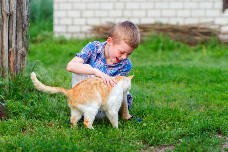 Smiling little boy in checkered shirt plays with a red cat royalty free stock image