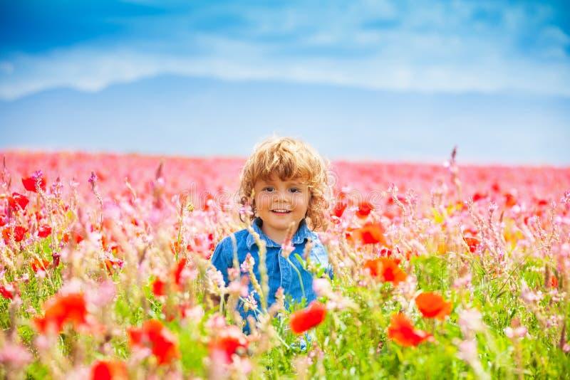 Smiling little boy in poppy field stock photography