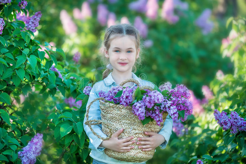 Smiling little cute blonde child girl 4-9 years with a bouquet of lilac in the hands in jeans and shirt stock images