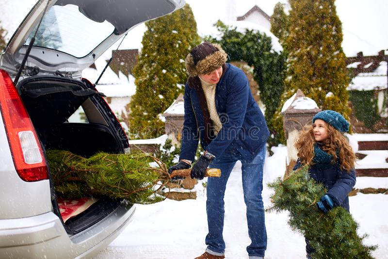 Smiling little girl and father get christmas tree out of car trunk near their house outdoors. Daughter helps dad with royalty free stock photography