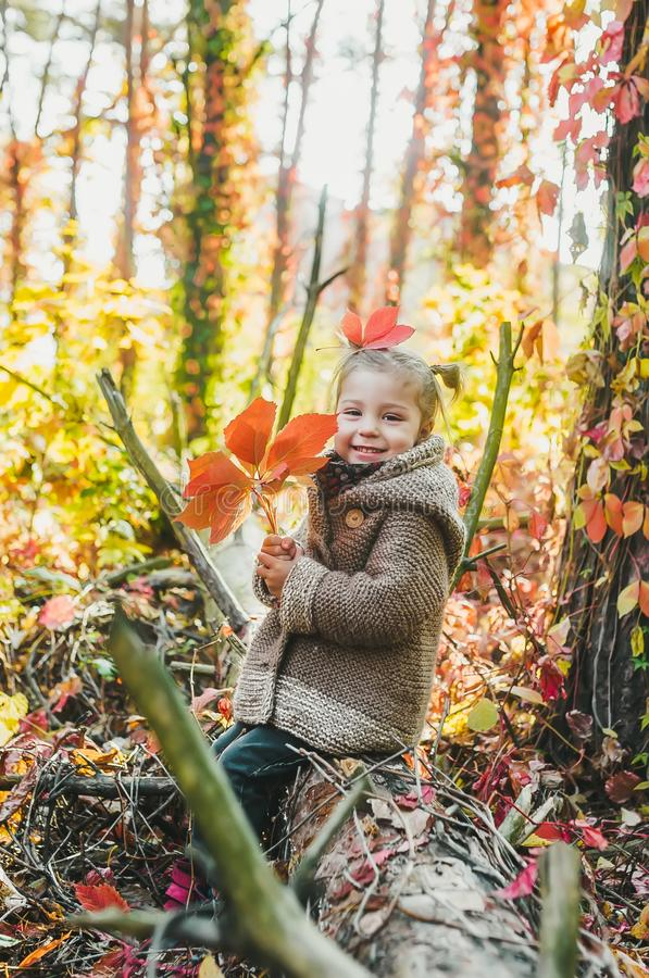 Little girl sitting in the forest with a bouquet of autumn yellow and red leaves stock photos