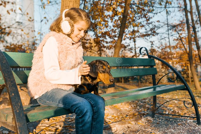 Smiling little owner of a dachshund dog sitting on bench in the autumn park, girl with love hugging dog at the golden hour stock photography