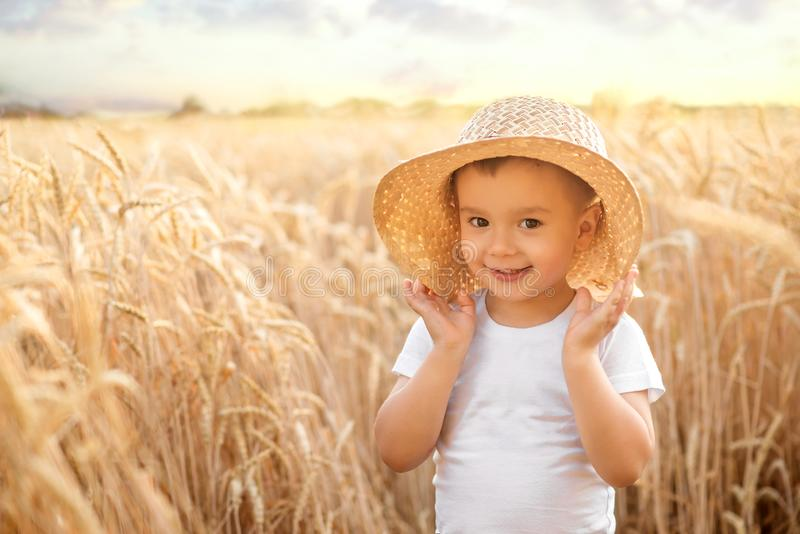 Smiling little toddler boy in straw hat holding fields standing in golden wheat field in summer day or evening. Spikes in background. Happy little agronomist royalty free stock photography