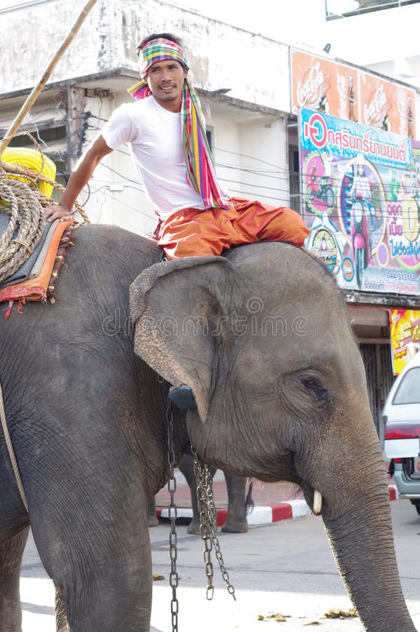 Smiling mahout stock images