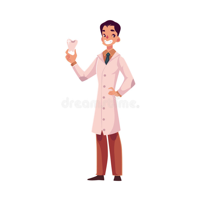Smiling male dentist doctor in lab coat holding big tooth royalty free illustration