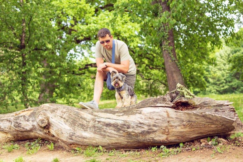 Man with cute dog enjoying in park stock photos