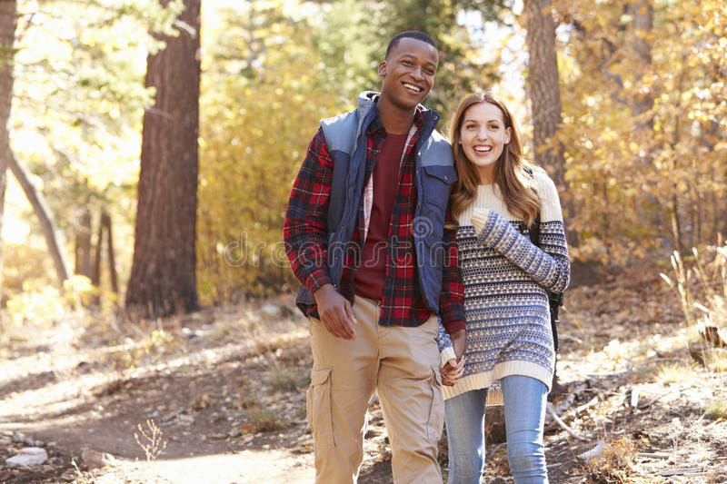Smiling mixed race couple hike in a forest holding hands stock photos