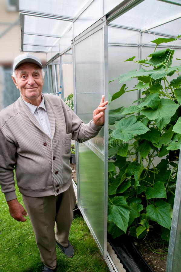 Smiling old man in his own garden stock photo