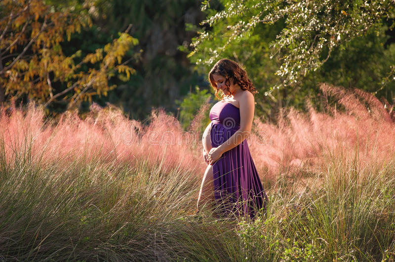 Smiling Pregnant Woman Standing in Colorful, Lush Foliage. A beautiful maternity portrait taken in colorful, lush foliage in South Florida royalty free stock image