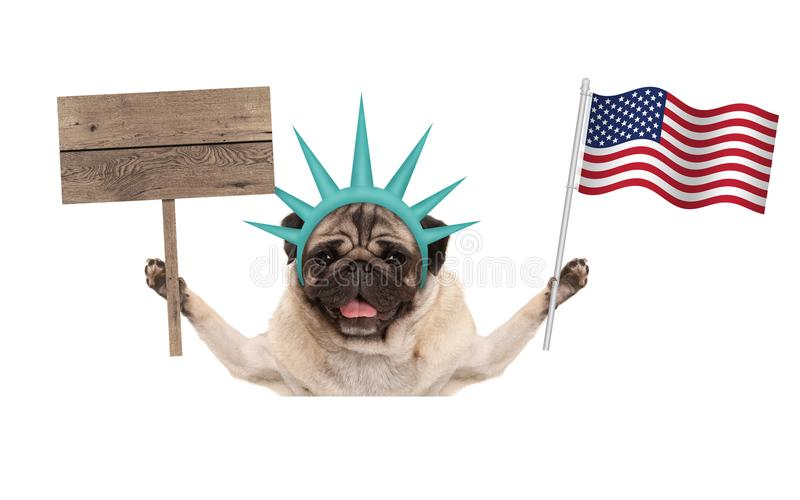Download Smiling Pug Puppy Dog Holding Up American Flag And Blank Wooden Sign Wearing Lady