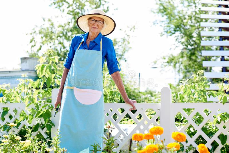 Smiling Senior Gardener Posing royalty free stock images