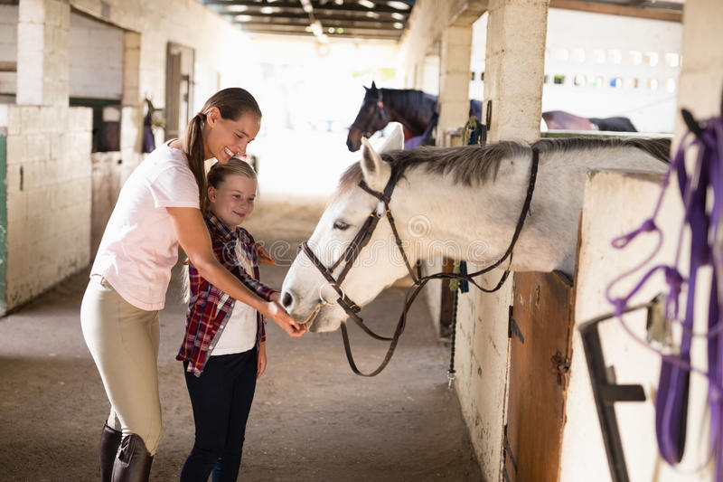 Smiling sisters feeding horse. While standing in stable royalty free stock images