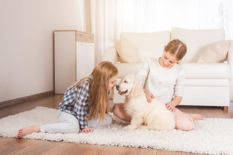 Smiling sisters sit together with retriever puppy stock photography