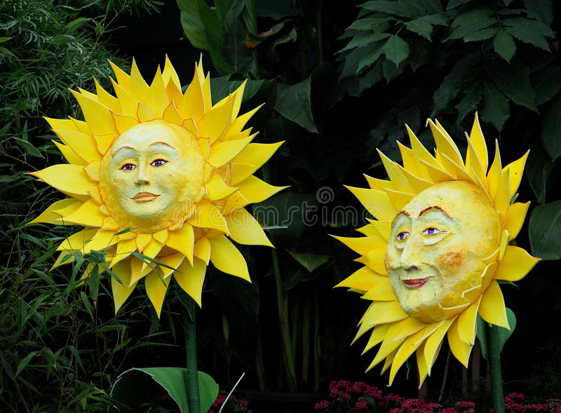Smiling Suns Or Sunflowers stock image