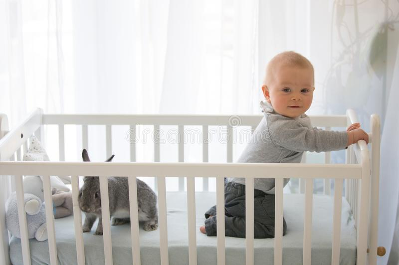Smiling toddler boy, playing with little rabbit in crib. Smiling happily stock photo