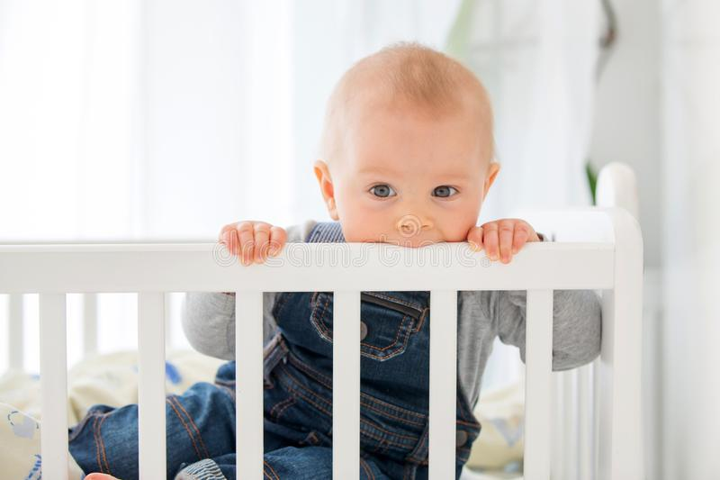 Smiling toddler boy, playing with little rabbit toy in crib. Smiling happily royalty free stock photo