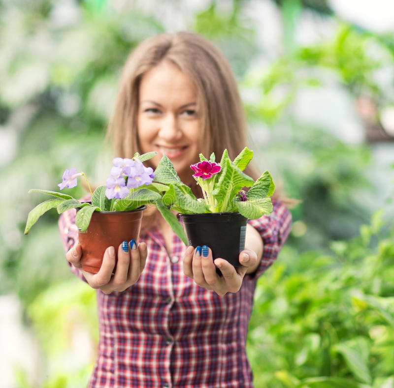 Smiling woman in greenhouse stock photography