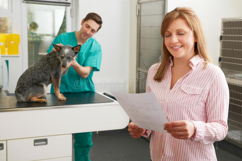 Smiling Woman Looking At Bill In Veterinary Surgery royalty free stock photography