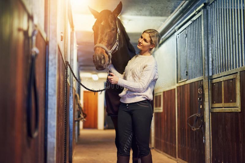 Smiling woman preparing her horse in stables before a ride stock images