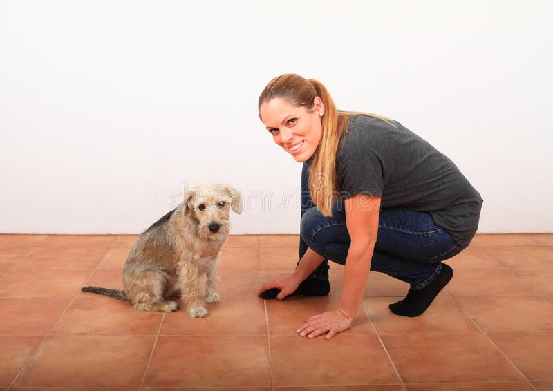 Smiling woman training her old white dog stock photos