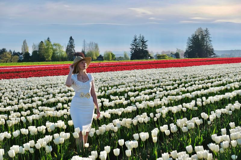 Smiling woman in tulip fields. Skagit Valley Tulip Festival. Mount Vernon. Seattle. WA. United States stock image