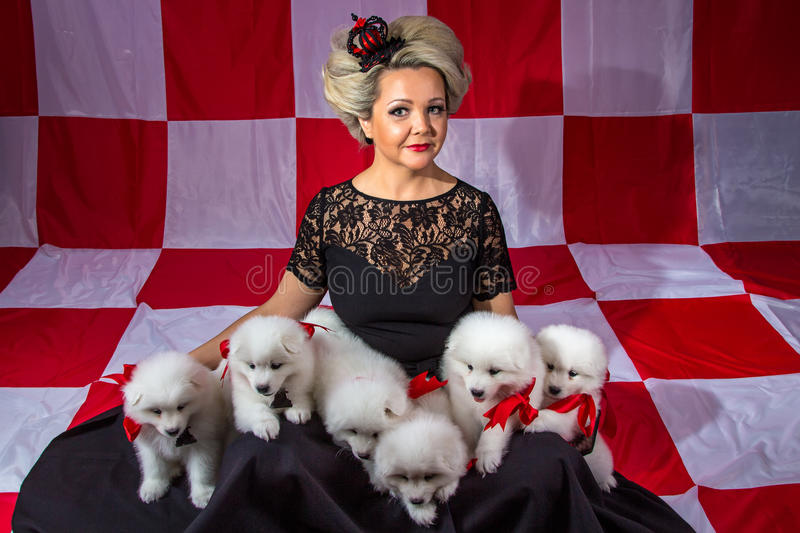 Smiling woman with white puppies stock image