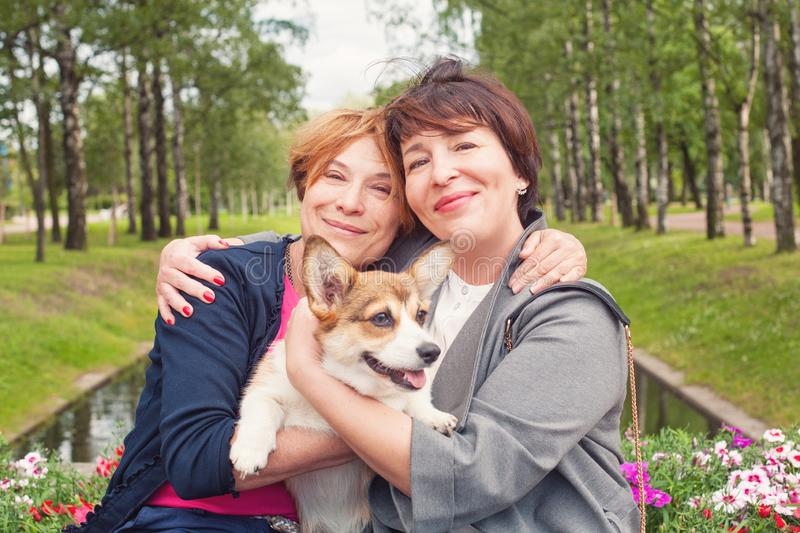 Smiling women with corgi puppy pet, lifestyle portrait royalty free stock image