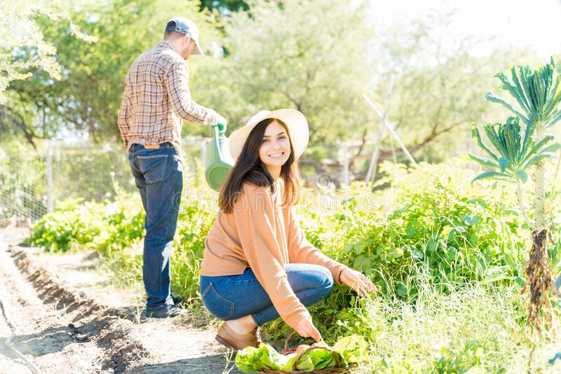 Happy Woman Working With Man In Farmland stock photo