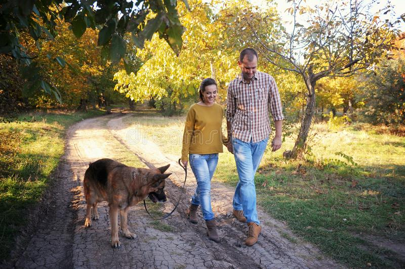 Smiling young adult love couple walking in park with their german shepherd dog, holding hands , young family portrait stock photo