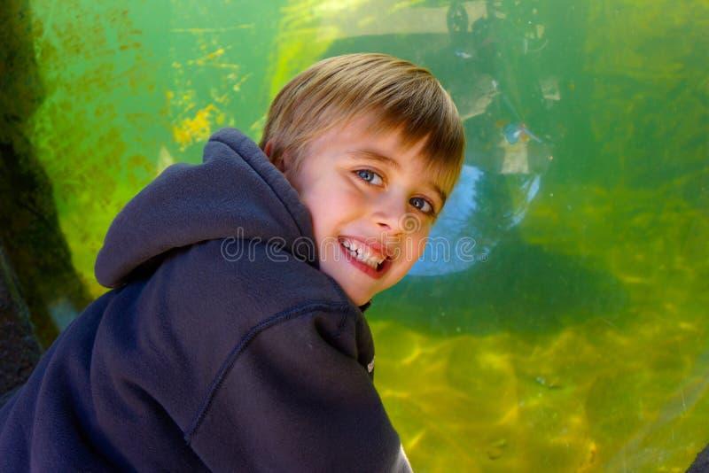 Smiling boy with aquarium tank stock photography