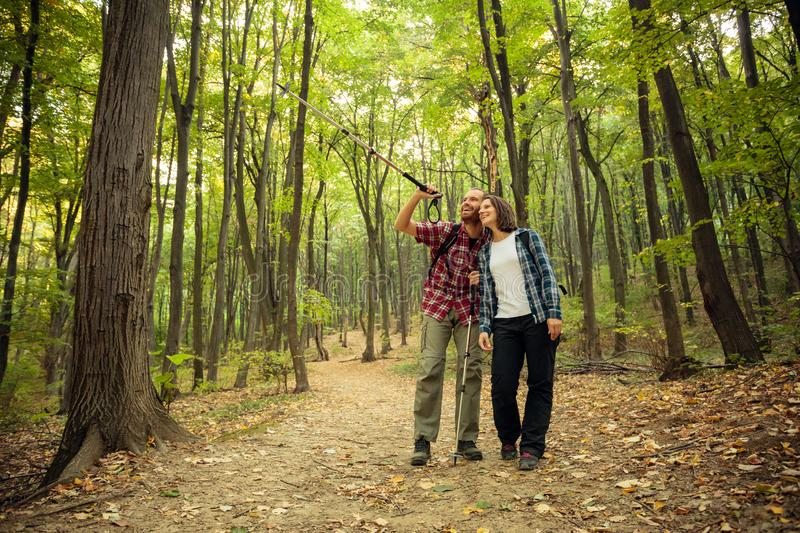 Smiling young couple hiking through forest. Man is pointing to a distance royalty free stock photography