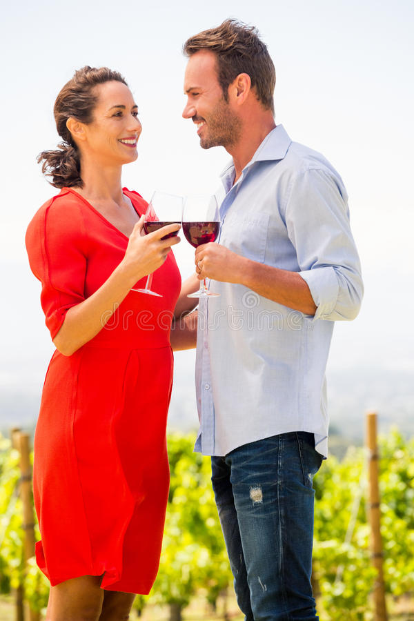 Smiling young couple toasting red wine. Against sky at vineyard stock photo