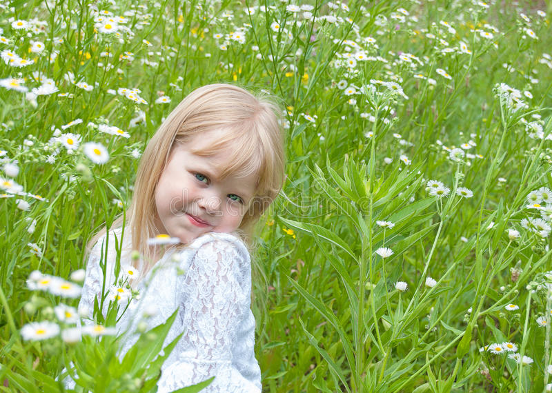 Smiling young girl in daises stock image
