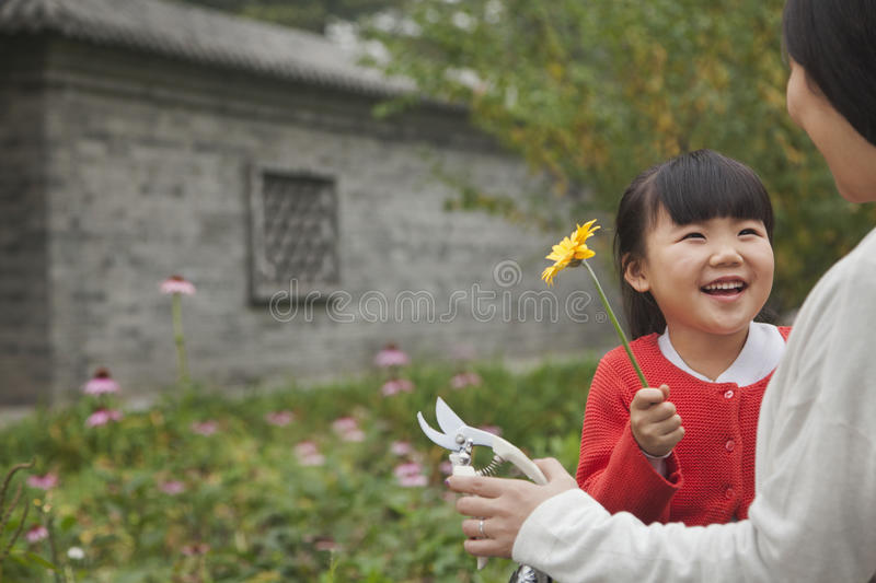 Smiling young girl giving flower to her grandmother in the garden stock photography