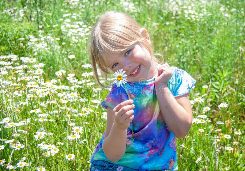 Smiling young girl in wildflower field stock photos