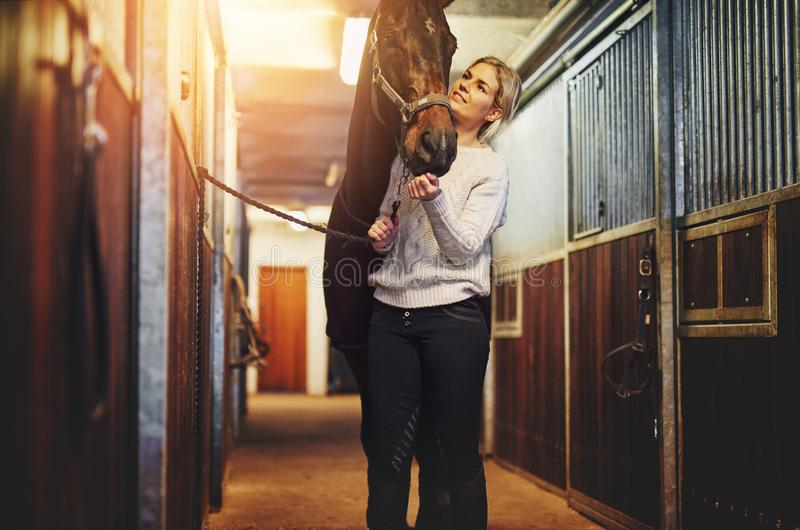 Young woman prepping her horse in stables before a ride royalty free stock images