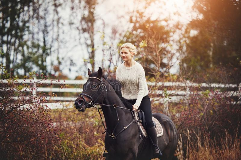 Young woman riding her horse through a pasture in autumn royalty free stock photos