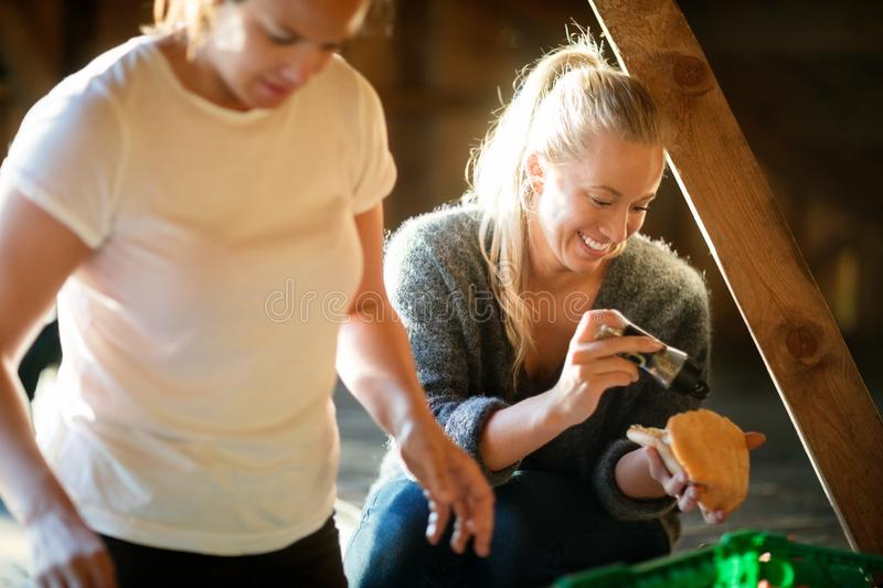 Smiling Young Woman Seasoning Bread By Coworker In Forest royalty free stock images
