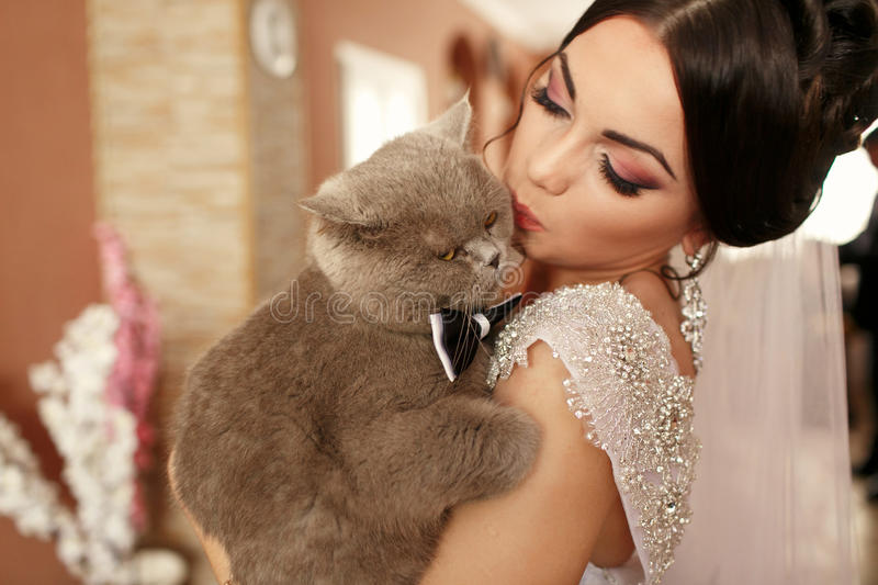 The smilling bride keeps her cat.  stock photo