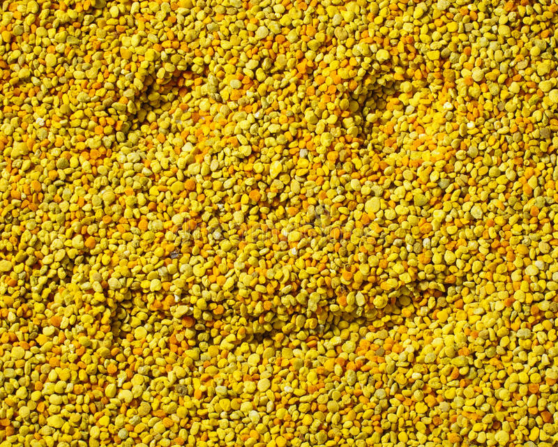Smilling font face sur la surface de pollen d'abeille, concept sain de la vie photo stock