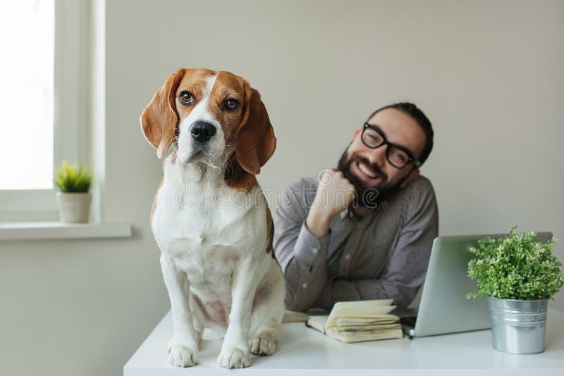 Smilling mężczyzna w szkłach z beagle na stole fotografia royalty free