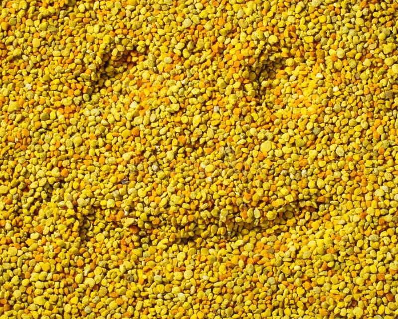 Smilling stellen auf Bienenblütenstauboberfläche, gesundes Lebenkonzept gegenüber stockfoto