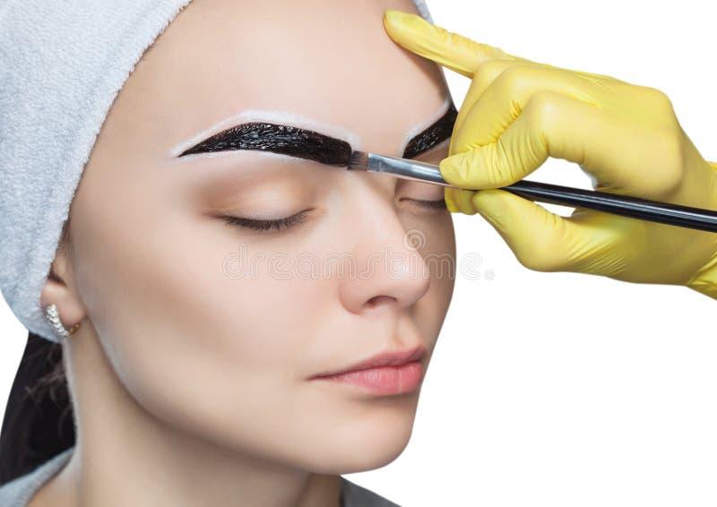 Sminkkonstnären applicerar en målarfärgögonbrynfärg på ögonbrynen av en ung flicka arkivbilder
