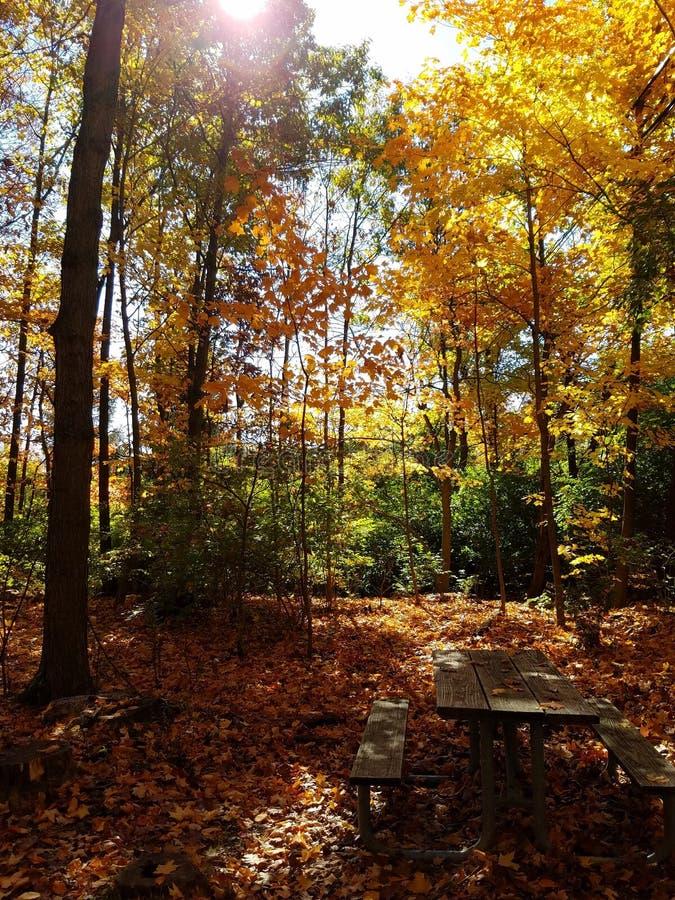 Smith Nature Park and Slyh Run royalty free stock photos