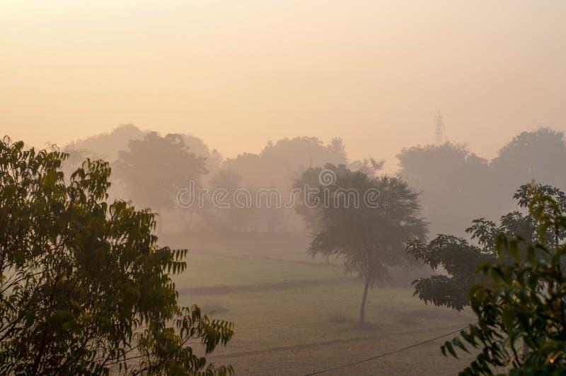 Smog in de ochtend royalty-vrije stock foto's